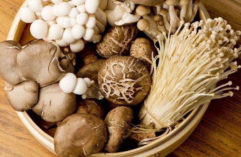 Các loại nấm cung cấp đầy đủ protein cho bệnh nhân viêm da cơ địa