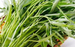 Ăn rau muống có bị sỏi thận không và lý giải từ chuyên gia