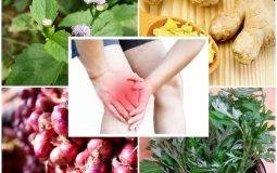 Top 16 cách trị đau khớp gối tại nhà đơn giản, hiệu quả nhanh