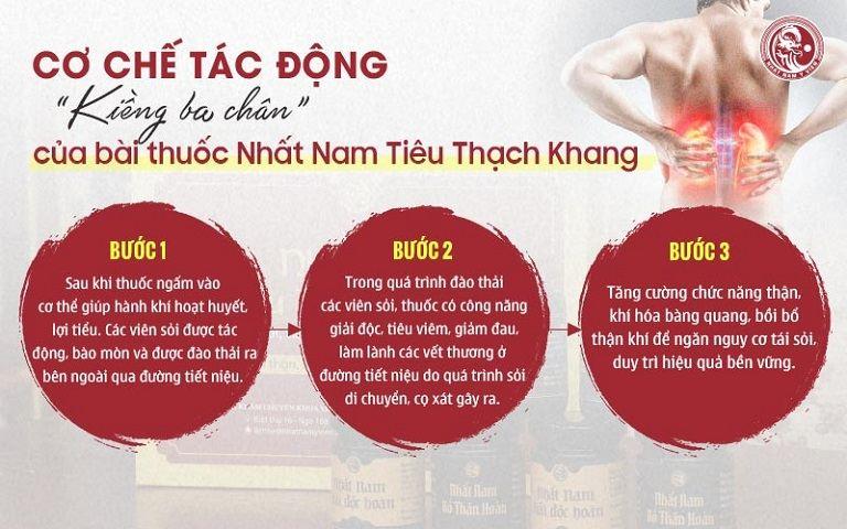 Cơ chế tác động kiềng ba chân của bài thuốc Nhất Nam Tiêu Thạch Khang