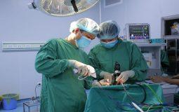 Phẫu thuật cắt amidan: Tổng hợp những thông tin không thể bỏ qua
