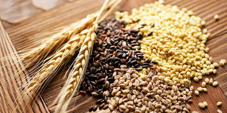 Người bệnh nên tăng cường tiêu thụ các loại ngũ cốc nguyên hạt