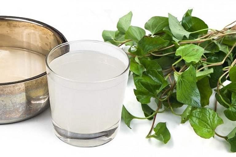 Người bệnh có thể tham khảo cách chữa viêm amidan bằng rau diếp cá và nước vo gạo