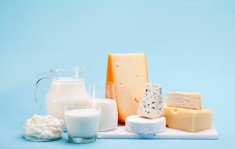 Sữa và sản phẩm từ sữa cung cấp hàm lượng canxi dồi dào cho hệ thống xương khớp