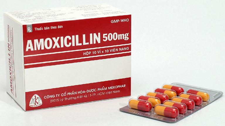 Amoxicillin là thuốc kháng sinh được sử dụng phổ biến