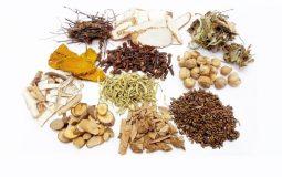 Top 7 bài thuốc Đông y trị tiểu đêm hiệu quả nhất hiện nay