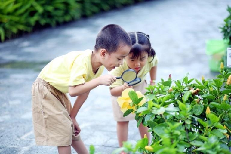 Hạn chế để trẻ tiếp xúc với các khu vực nhiều cây cối, côn trùng, ô nhiễm, khói bụi,...